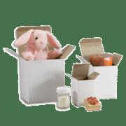 Reverse Tuck Cartons (White)